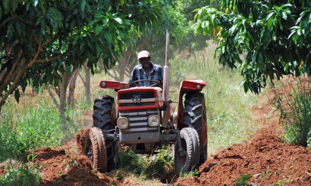 Fieragricola 2020: in Africa grosse chance per l'agromeccanica