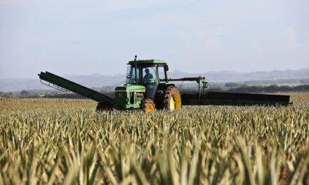 Tradus stila la classifica delle macchine agricole usate più richieste in Italia
