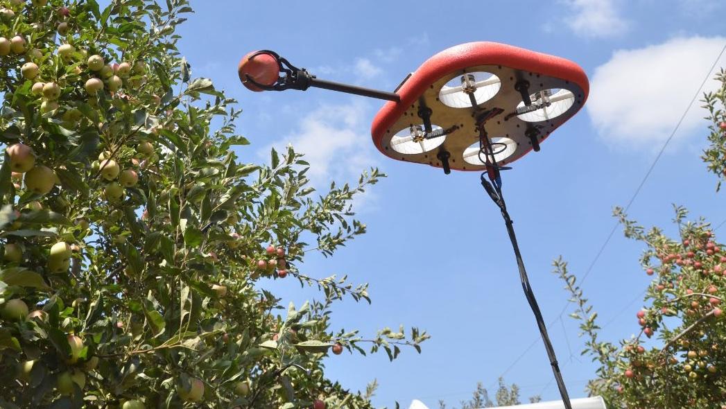 Kubota investe in Tevel, leader nella raccolta robotizzata della frutta