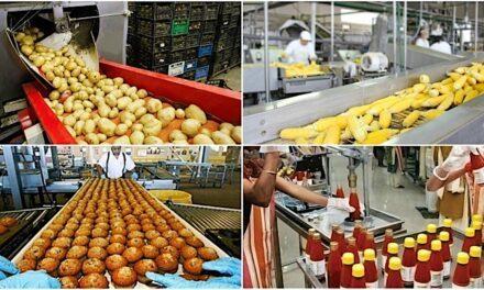 "The Mega Food Park: partnership italo-indiana nel campo del ""food processing"""